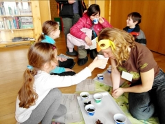 Aktivity projektu Sedm bran do Litovelského Pomoraví